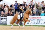 Caino Royale K - Bundeschampion 2009